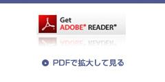 PDFで拡大して見る